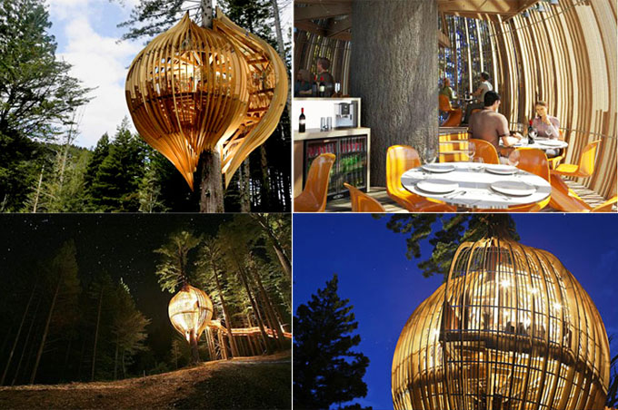 Funky Restaurants  The Yellow Treehouse Restaurant, New Zealand